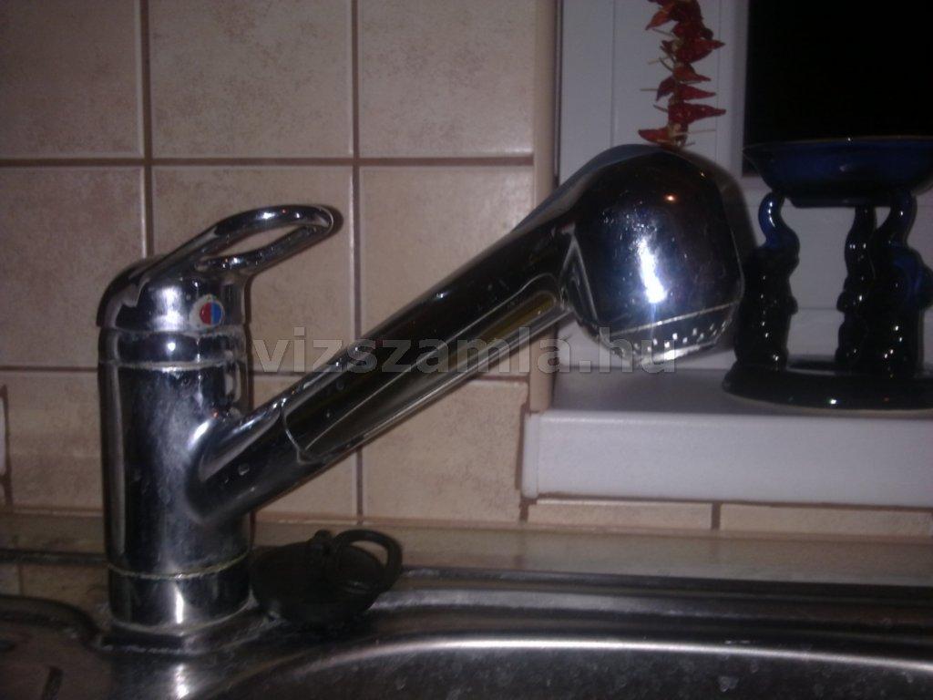 Zuhanyfejes mosogatócsap